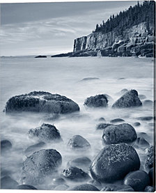 Acadia Coast Crop by Alan Majchrowicz Canvas Art