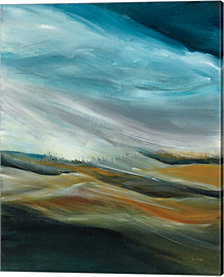 Sand Storm by Jan Griggs Canvas Art