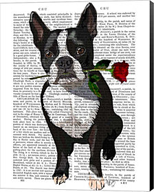 Boston Terrier with Rose in Mouth by Fab Funky Canvas Art