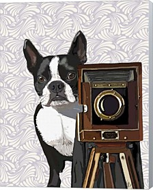 Boston Terrier Photographer By Fab Funky Canvas Art