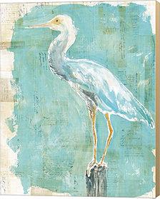 Coastal Egret II by Sue Schlabach Canvas Art