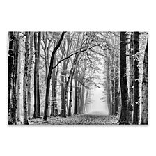 Black And White Forest Silver Metallic Canvas