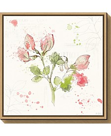 Amanti Art Floral Splash II by Katie Pertiet Canvas Framed Art