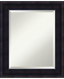 Amanti Art Annatto 21x25 Bathroom Mirror