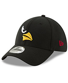 New Era Arizona Cardinals Logo Elements Collection 39THIRTY Cap
