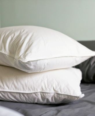 Luxe Down Filled Compartment 2-Pack of Standard Pillows, Medium Firm