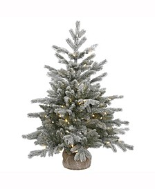 36 inch Frosted Sable Pine Artificial Christmas Tree With 100 Clear Lights