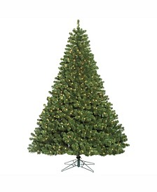 6.5 ft Oregon Fir Artificial Christmas Tree