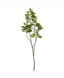 """48"""" Artificial Green Cotinus Coggygria Tree With 72 Leaves"""