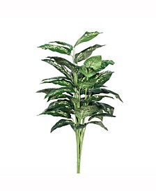 """36"""" Artificial Green And White Diffenbachia Plant Featuring 5 Branches With 40 Leaves"""