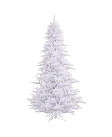 6.5' White Fir Artificial Christmas Tree Unlit