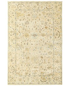 Palace 10301 Beige/Gray 6' x 9' Area Rug