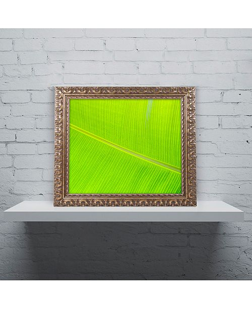 """Trademark Global Cora Niele 'Leaf Texture II' Ornate Framed Art, 11"""" x 14"""""""