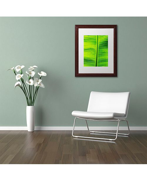 "Trademark Global Cora Niele 'Leaf Texture VIII' Matted Framed Art, 11"" x 14"""
