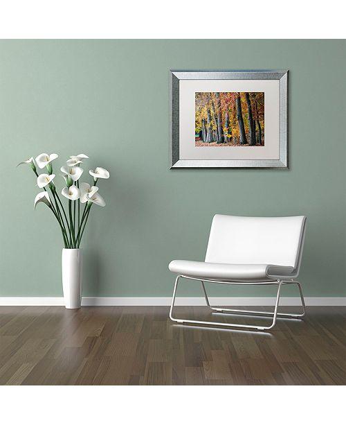 "Trademark Global Cora Niele 'Autumn Beeches I' Matted Framed Art, 16"" x 20"""