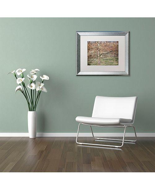 "Trademark Global Cora Niele 'Birch' Matted Framed Art, 16"" x 20"""