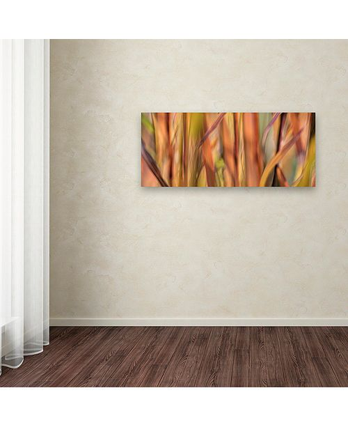 "Trademark Global Cora Niele 'Autumn Grass Scape' Canvas Art, 20"" x 47"""