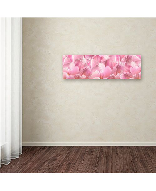 "Trademark Global Cora Niele 'Pink Tulip Scape' Canvas Art, 8"" x 24"""