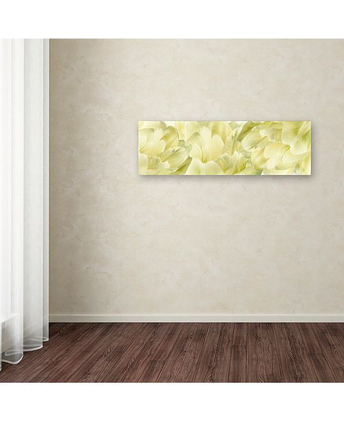 "Trademark Global Cora Niele 'Yellow Tulip Scape' Canvas Art, 8"" x 24"""