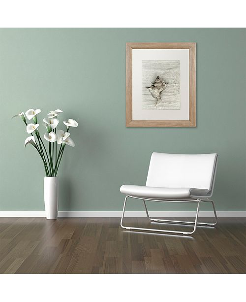 """Trademark Global Cora Niele 'Murex Shell' Matted Framed Art, 11"""" x 14"""""""