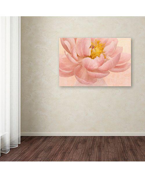 "Trademark Global Cora Niele 'Pink Peony' Canvas Art, 12"" x 19"""