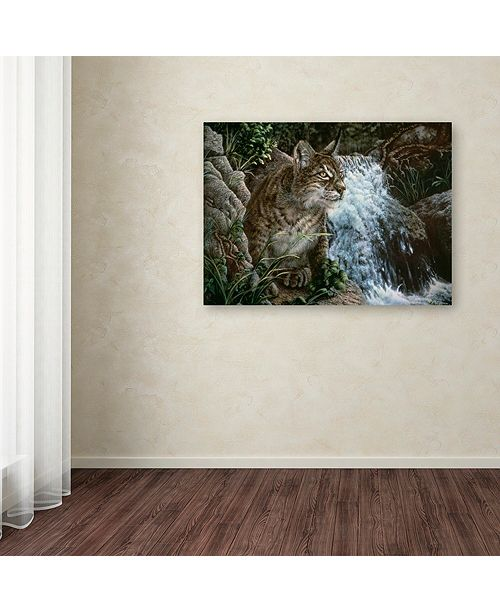"Trademark Global Jenny Newland 'Danger In Paradise' Canvas Art, 35"" x 47"""