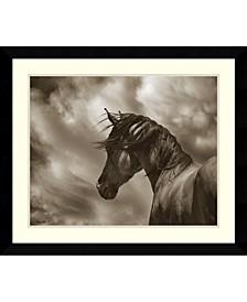 The Renegade Horse  Framed Art Print