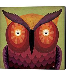 Owl WOW by Ryan Fowler C