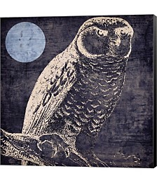 Owl 1 by Color Bakery Canvas Art