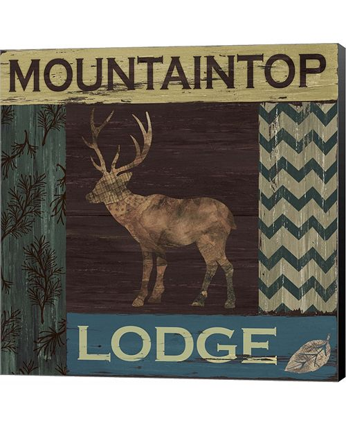Metaverse Mountain Lodge by Fiona Stokes-Gilbert Canvas Art