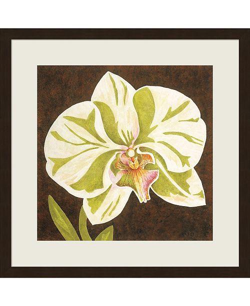 Metaverse Surabaya Orchid Peta by Judy Shelby Framed Art