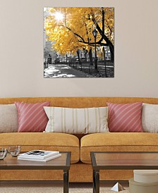 "iCanvas ""Park Pretty II"" by Assaf Frank Gallery-Wrapped Canvas Print (26 x 26 x 0.75)"