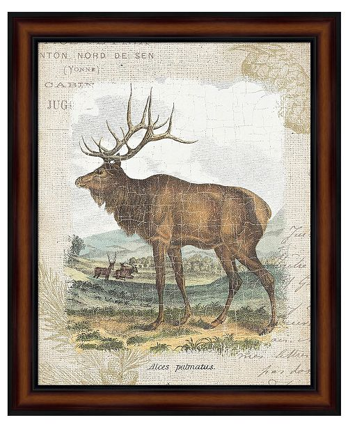 Metaverse Woodland Stag II by Wild Apple Portfolio Framed Art