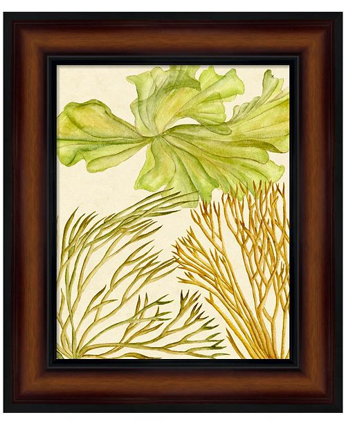 Metaverse Vintage Seaweed Collection I by Melissa Wang Framed Art