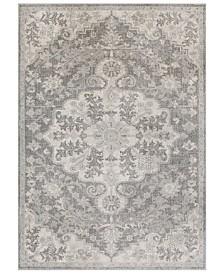 Surya Harput HAP-1070 Light Gray 2' x 3' Area Rug