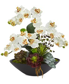Nearly Natural Phalaenopsis Orchid & Mixed Succulent Garden Artificial Arrangement in Black Vase