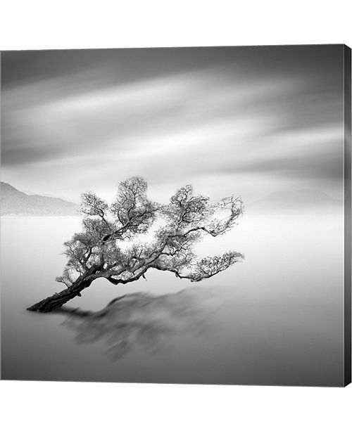 Metaverse Water Tree VI by Moises Levy Canvas Art