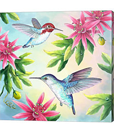 Bee Hummingbirds by Rosiland Solomon Canvas Art