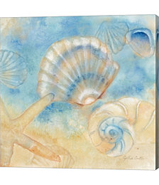 Watercolor Shells II by Cynthia Coulter Canvas Art