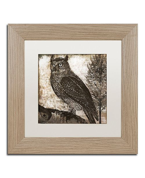 "Trademark Global Color Bakery 'Owl 2' Matted Framed Art, 11"" x 11"""