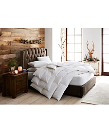 European White Goose Down Lightweight Comforters, Hypoallergenic UltraClean Down, Created for Macy's