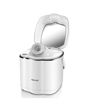 Image of Hot Mist Nano Steamer