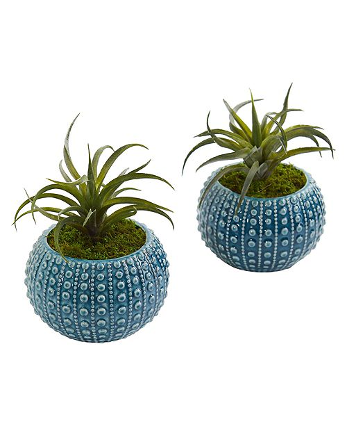 Nearly Natural Air Plant Artificial Succulent in Blue Vase, Set of 2