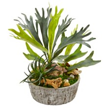 Nearly Natural Staghorn and Succulent Artificial Plant in Weathered Planter