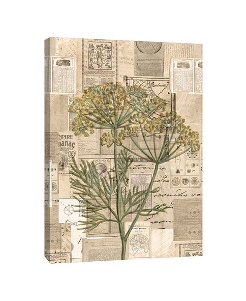 PTM Images Yellow Wildflower Illustration Decorative Canvas Wall Art