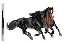 & Brown Horse Decorative Canvas Wall Art