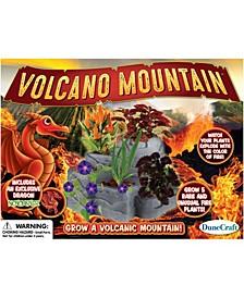 Mountain Garden - Volcano Mountain