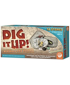 Dig It Up! - Minerals and Fossils