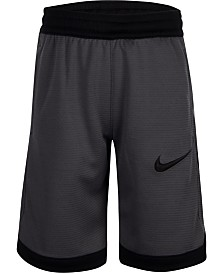 Nike Toddler Boys Dry Elite Shorts