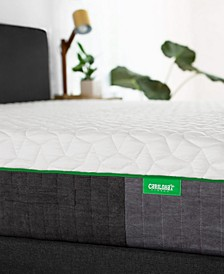 "Carihola 12"" Charcoal Memory Foam, Mattress in a Box - Queen"